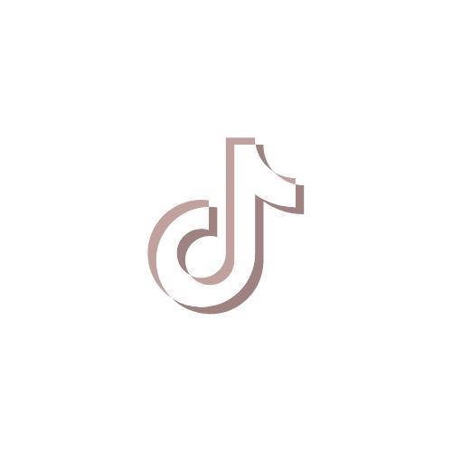 AJ's Social Portal: TikTok
